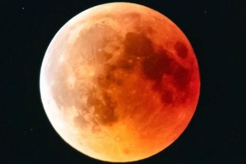 Super Blood Wolf Moon did bring out the photographer in people